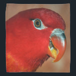 """Chattering lory bandana<br><div class=""""desc"""">Gifts for the Parrot lover! The chattering lory (Lorius garrulus) is a forest-dwelling parrot endemic to North Maluku, Indonesia. It is considered vulnerable, the main threat being from trapping for the cage-bird trade. It occurs up to 1, 050 m, most commonly in montane forest, rarely in gardens and coconut plantations,...</div>"""