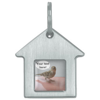 Chattering Sparrow Pet ID Tag