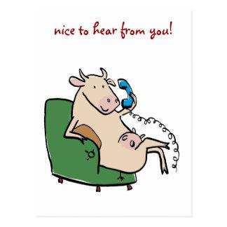 ¡chatting_cow, agradable oír de usted! tarjetas postales