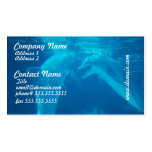 Chatting Dolphin Pair Business Cards