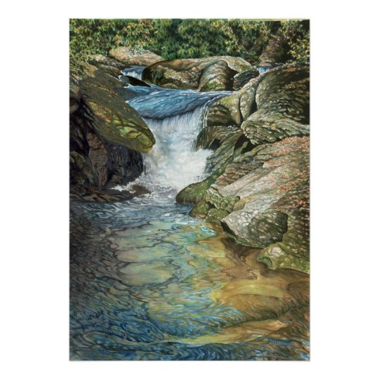 Chattooga River Poster