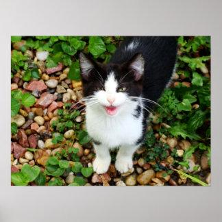 Chatty Catty Print