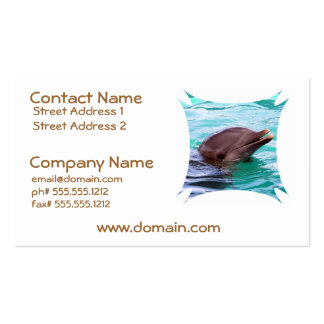 Chatty Dolphin Business Cards