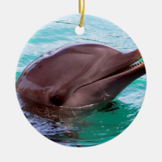Chatty Dolphin Christmas Tree Ornaments