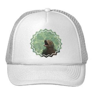 Chatty Sea Lion Baseball Hat