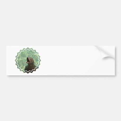 Chatty Sea Lion Bumper Sticker Car Bumper Sticker