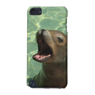 Chatty Sea Lion iTouch Case iPod Touch (5th Generation) Case