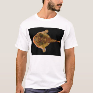Chaunax Stigmaeus Fish T-Shirt