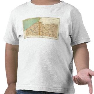 Chautauqua, condados de Cattaraugus Camisetas