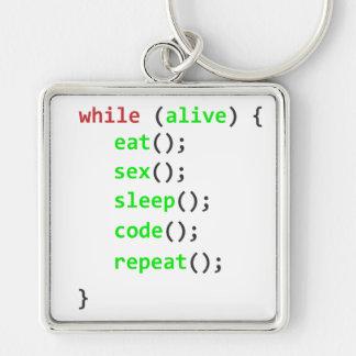 Chaveiro programs while keychain