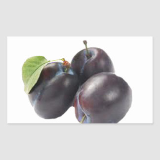 check out my juicy plums.jpg rectangular sticker