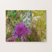 Checkered Butterfly Jigsaw Puzzle