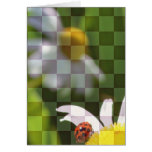 Checkered Floral Greeting Card