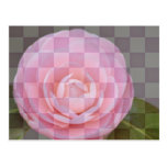 Checkered Floral Postcard