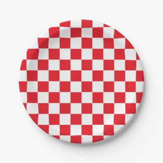 Checkered Red and White Paper Plate