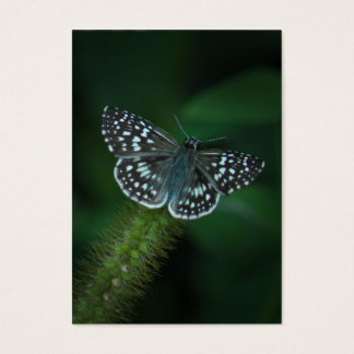 Checkered Skipper Butterfly ATC Photo Card