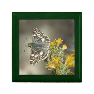 Checkered Skipper Butterfly Gift Box
