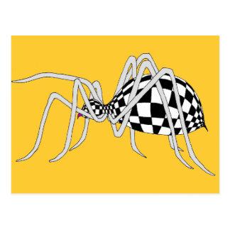 Checkered Spider Postcard