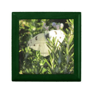 Checkered White Butterfly Gift Box