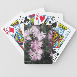 Cheddar pink (Dianthus gratianopolitanus) Bicycle Playing Cards
