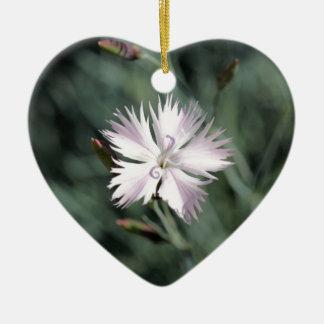 Cheddar pink (Dianthus gratianopolitanus) Ceramic Ornament