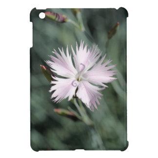 Cheddar pink (Dianthus gratianopolitanus) iPad Mini Covers