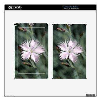 Cheddar pink (Dianthus gratianopolitanus) Skins For Kindle Fire