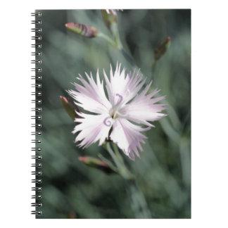 Cheddar pink (Dianthus gratianopolitanus) Spiral Notebook