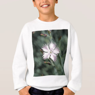 Cheddar pink (Dianthus gratianopolitanus) Sweatshirt