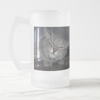 Cheeky Cat Grin After Drinking From Kitchen Tap, Frosted Glass Beer Mug