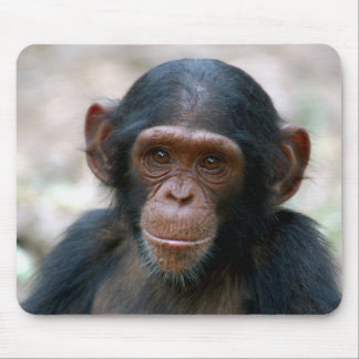 Cheeky Chimp Mouse Pads