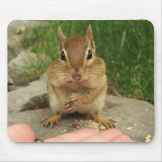 Cheeky Chipmunk Mouse Pad