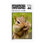 Cheeky Chipmunk Postage