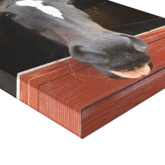 Cheeky Horse Canvas