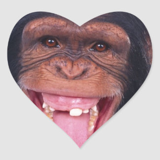 cheeky monkey chimp chimpanzee wild animal heart sticker