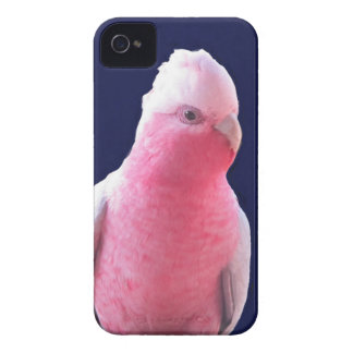 Cheeky pink and grey Australian parrot iPhone 4 Case-Mate Case