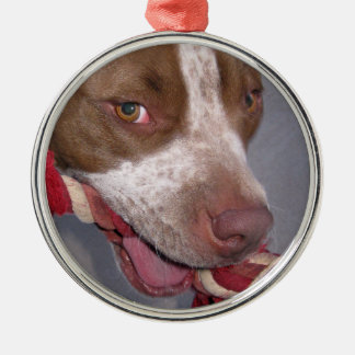 Cheeky Pitbull Ornaments
