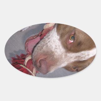 Cheeky Pitbull Stickers