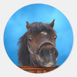 Cheeky pony, Customize me. Classic Round Sticker