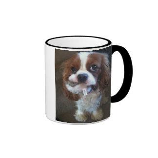 Cheeky Puppy  Blenheim Cavalier Ringer Mug