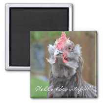 Cheeky Rooster Hello Magnet