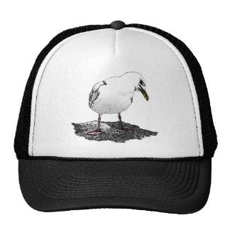 Cheeky Seagull Hat