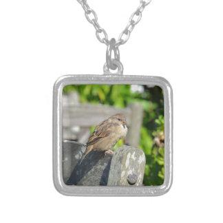 Cheeky Sparrow Jewelry