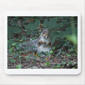 Cheeky Squirell Mouse Pad