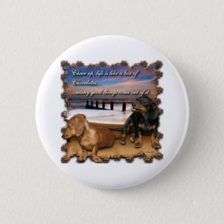 Cheer up, life is like a box of chocolates... pinback button