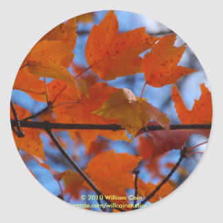 Cheerful Autumn Leaves Classic Round Sticker