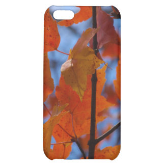 Cheerful Autumn Leaves iPhone 5C Covers