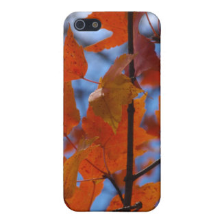 Cheerful Autumn Leaves iPhone 5 Cases