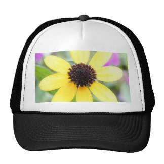 Cheerful Black Eyed Susan Mesh Hats