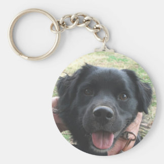 Cheerful Black Lab Pup Does Camera Pose Basic Round Button Keychain